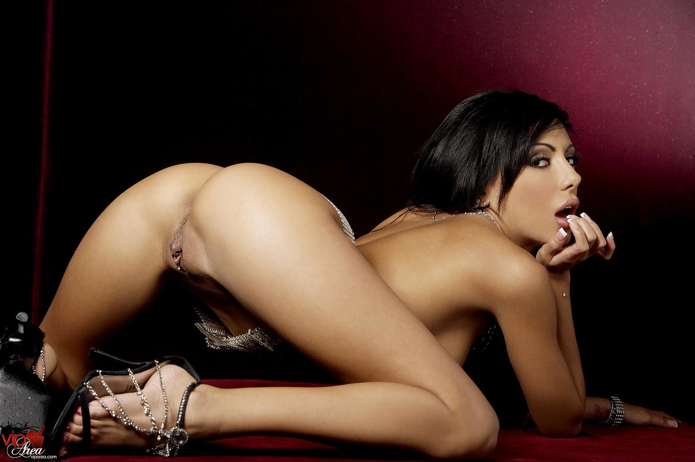 Порно актриса порно актриса